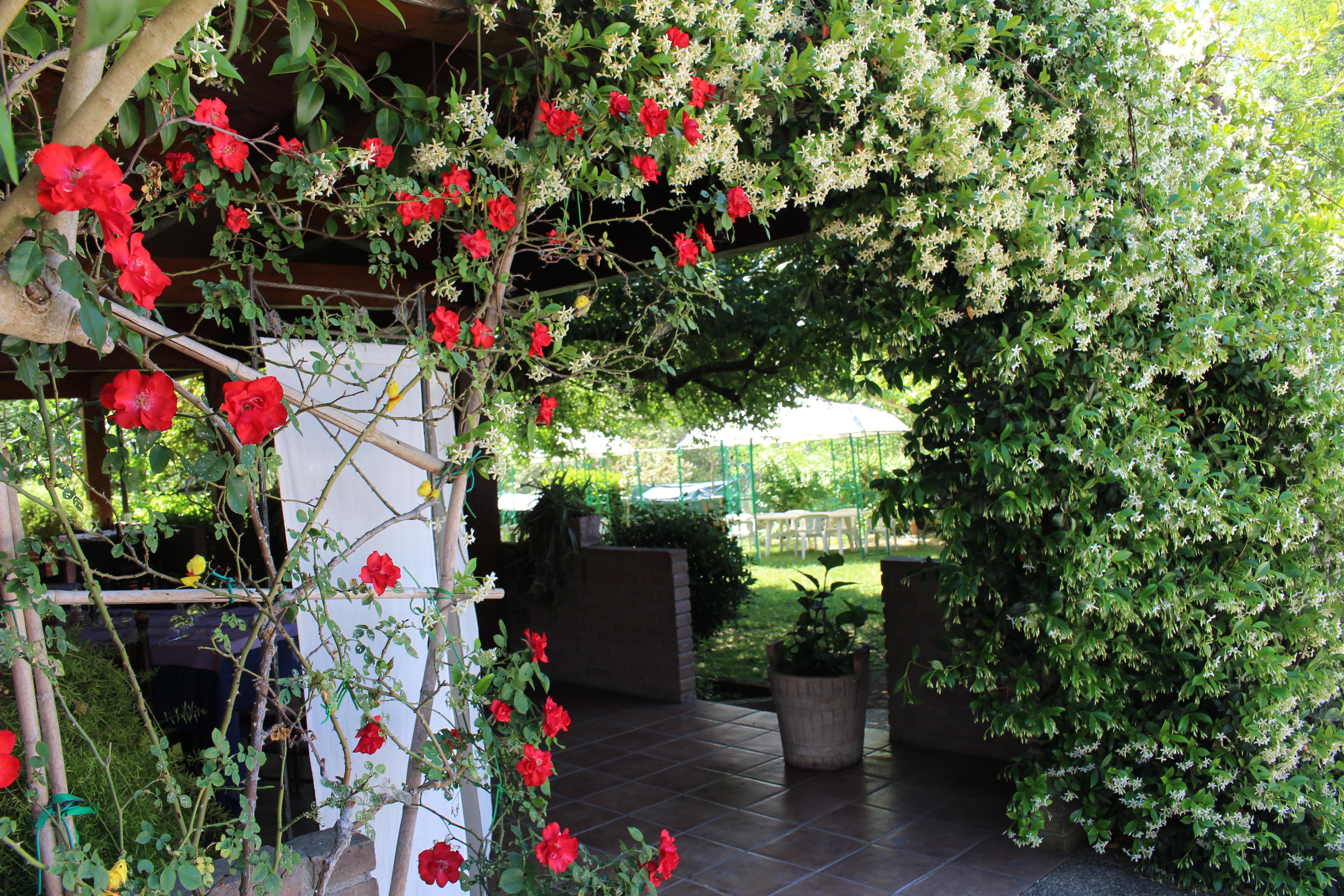 Hotel Ristorante Bar più appartamenti a Perugia